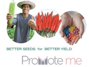 East West seeds