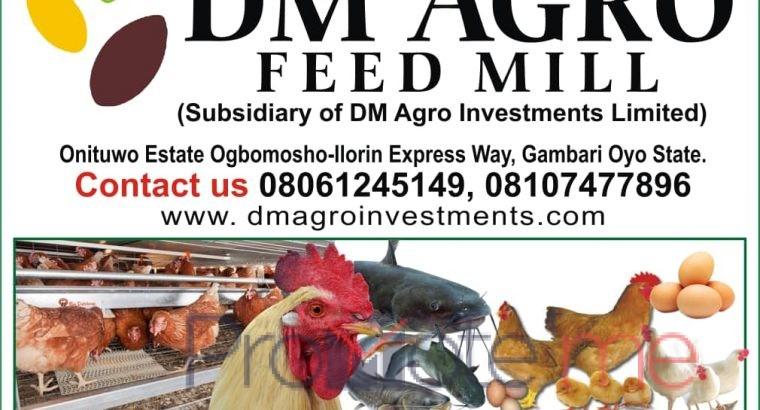 D M Agro investment